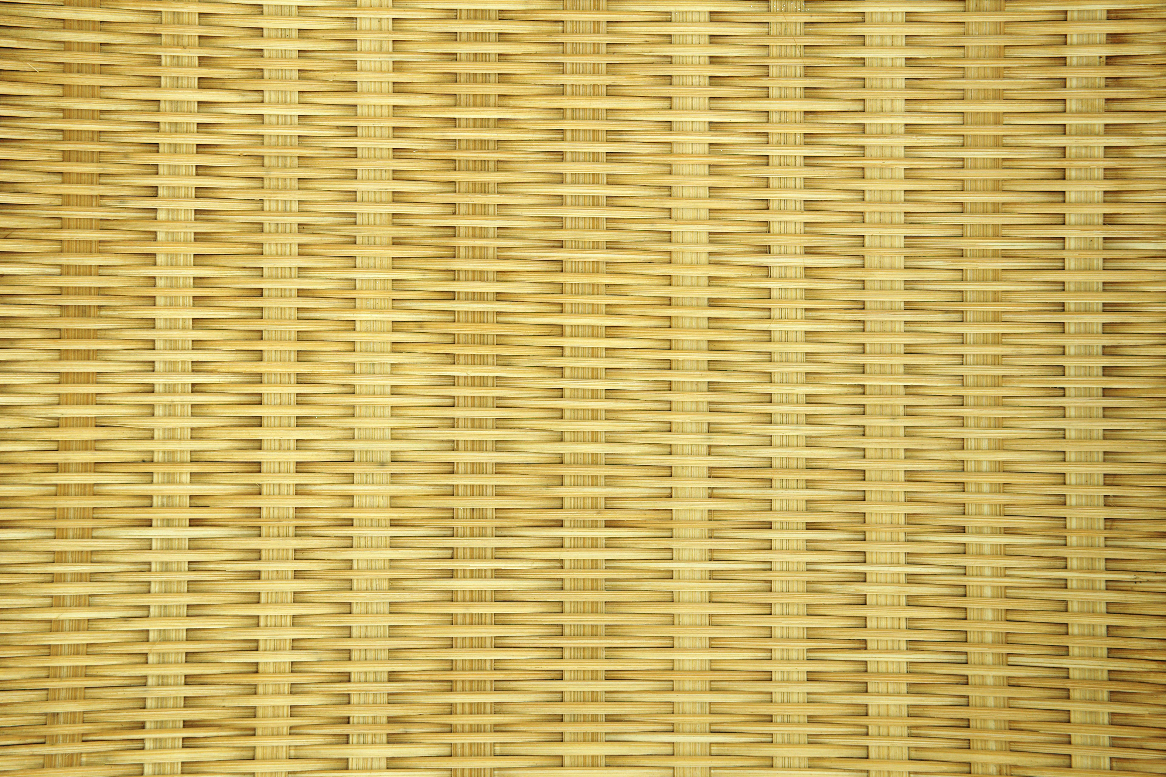Bamboo,craft,nature,wood