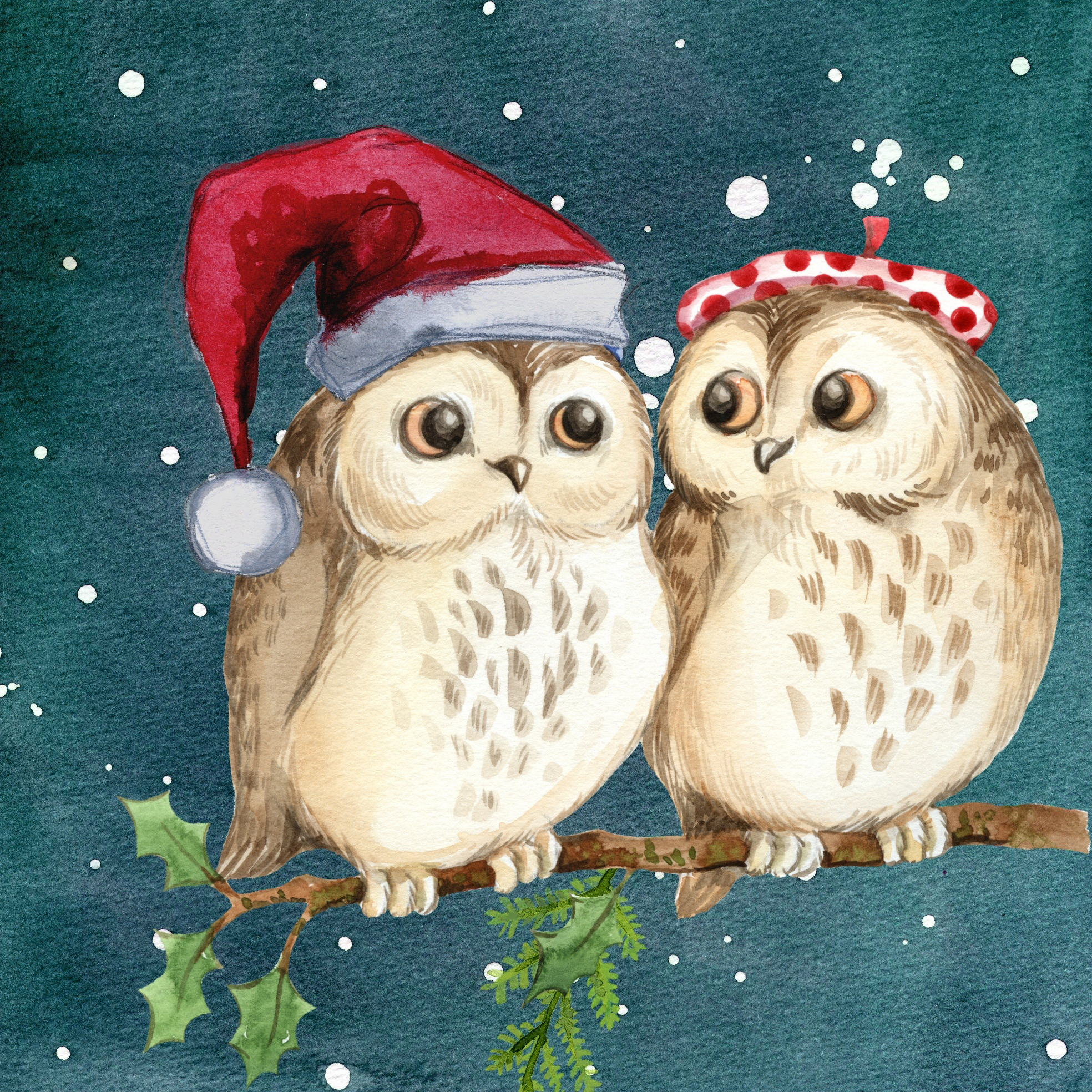 christams, owl, winter, snow