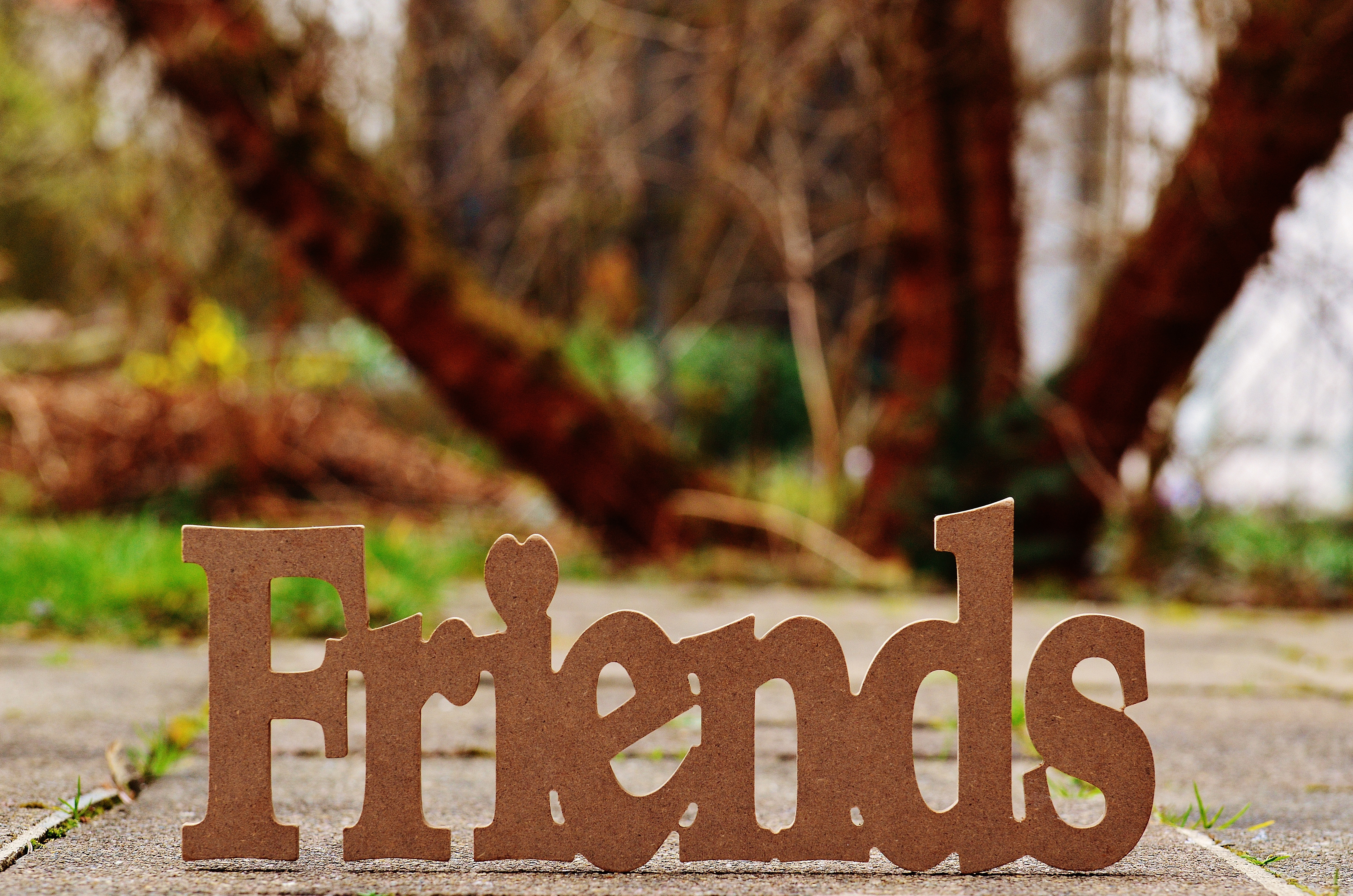 friends, friendship, love,