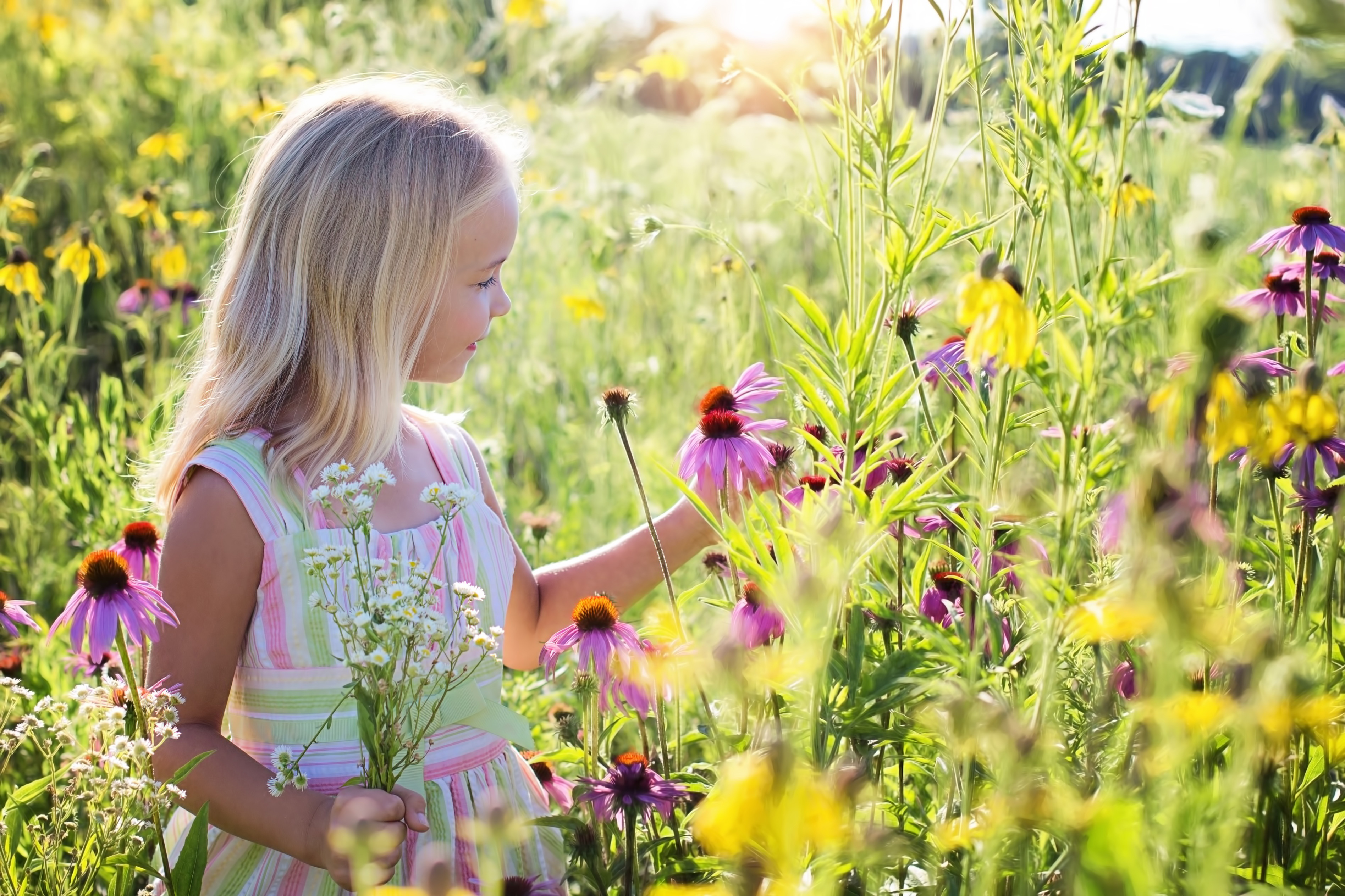 Little girl, summer, flower, cute, blossoms