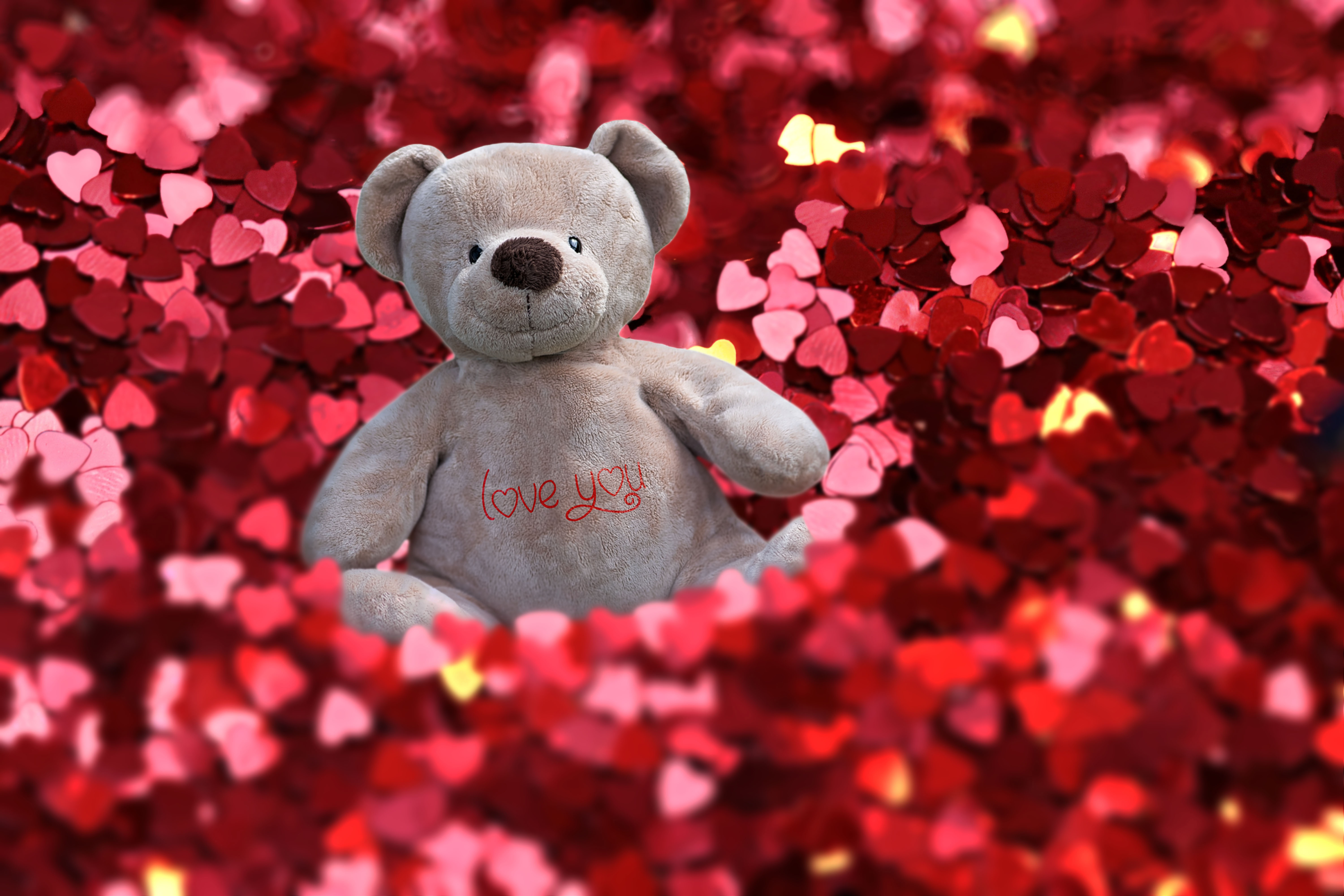 red hearts, valentine, love, feeling, teddy, gift,
