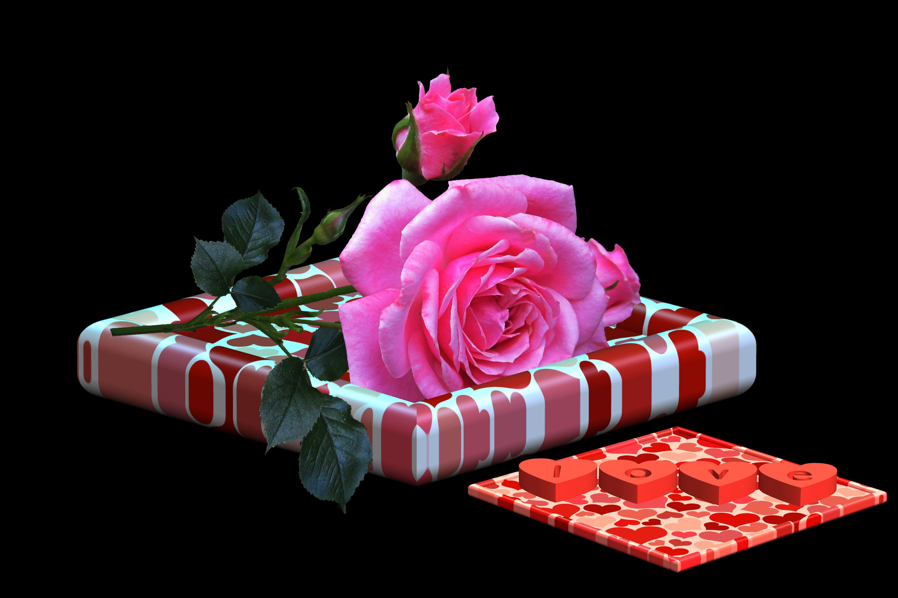 rose, flower, dedicated, wishes, decoration, emotion, gift, romantic,